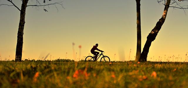 Fahrradfahrerin im Herbst