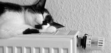 gaspreise gaspreisentwicklung wechseln und gaskosten. Black Bedroom Furniture Sets. Home Design Ideas