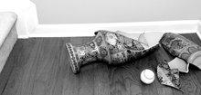 private haftpflichtversicherung im vergleich so finden. Black Bedroom Furniture Sets. Home Design Ideas